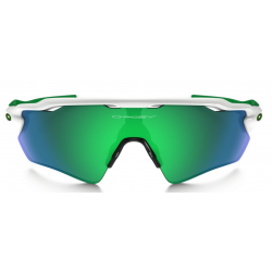 Oakley Radar Ev Path OO9208-920848
